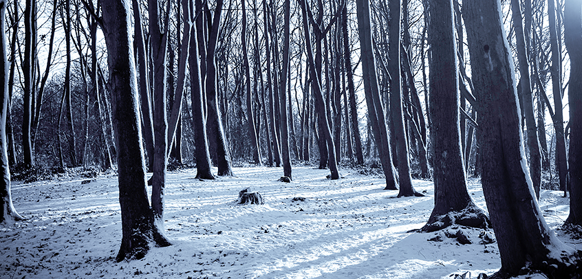 7 Tips for Running in Winter